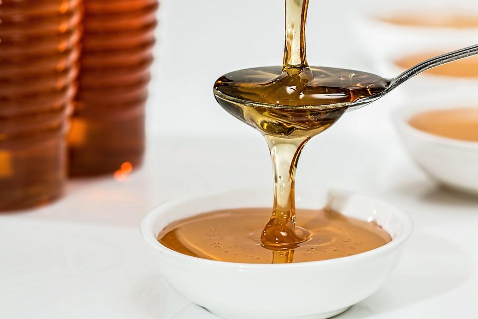 Der süße Honig dient als Lockstoff, um möglichst viele Silberfische in die Falle zu locken.